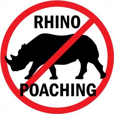 Rhino 2.jpeg